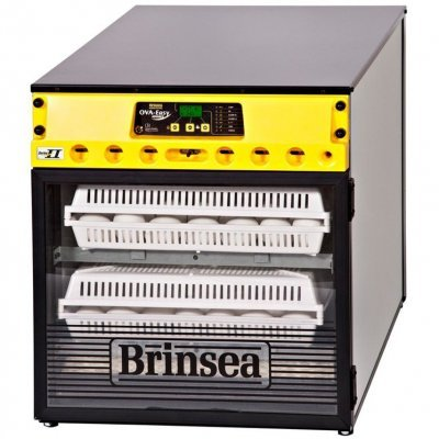 Выводной инкубатор Brinsea OvaEasy Hatcher Advance EX Series II